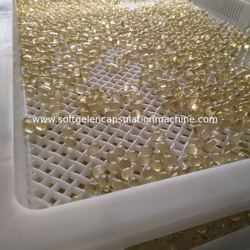 Softgel Capsules Plastic Drying Trays High Temperature Bearing Customized Color